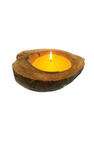 Свеча в кокосе GIFTNHOME GIFT'N'HOME. Цвет: желтый