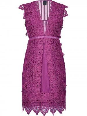 Приталенное кружевное платье Pinko. Цвет: фиолетовый
