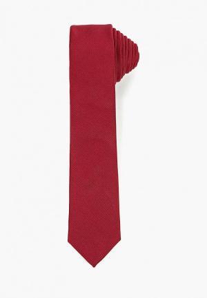 Галстук Burton Menswear London. Цвет: бордовый
