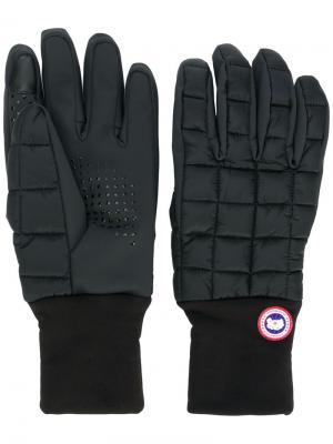 Стеганые перчатки с логотипом Canada Goose. Цвет: черный