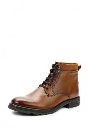 Ботинки Base London. Цвет: коричневый
