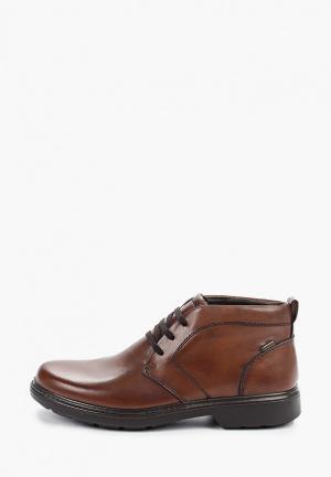 Ботинки Ara. Цвет: коричневый