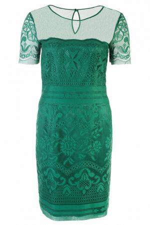 Платье Alberta Ferretti. Цвет: зеленый