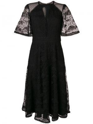 Платье Haze с кружевными рукавами Temperley London. Цвет: черный