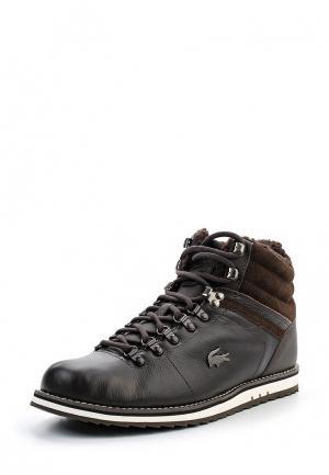 Ботинки Lacoste. Цвет: коричневый