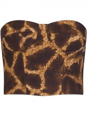 Топ-бюстье с принтом Dolce & Gabbana. Цвет: коричневый