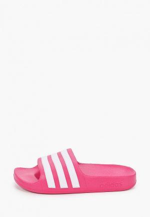Сланцы adidas Originals. Цвет: розовый