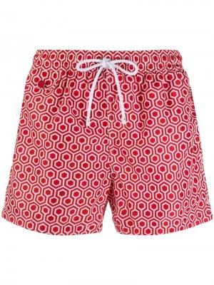 Плавки-шорты с принтом Kiton. Цвет: красный