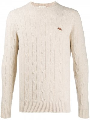 Пуловер фактурной вязки с логотипом Etro. Цвет: нейтральные цвета