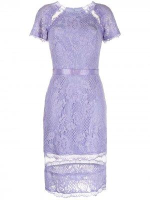 Кружевное платье Satomi Tadashi Shoji. Цвет: фиолетовый