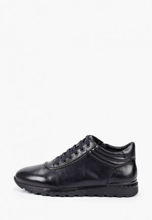 Ботинки Marco Lippi. Цвет: синий