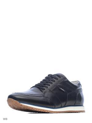 Кроссовки Alba. Цвет: черный