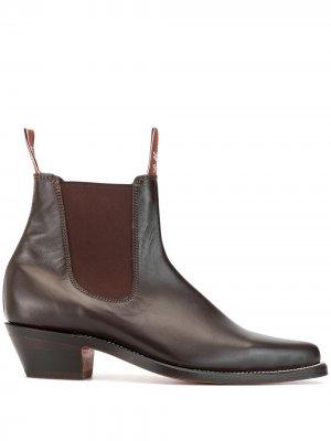 Ботинки челси Millicent с заостренным носком R.M.Williams. Цвет: коричневый