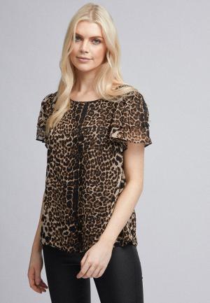 Блуза Dorothy Perkins. Цвет: коричневый
