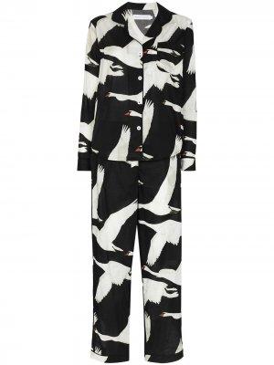 Пижама Leda с длинными рукавами Desmond & Dempsey. Цвет: черный