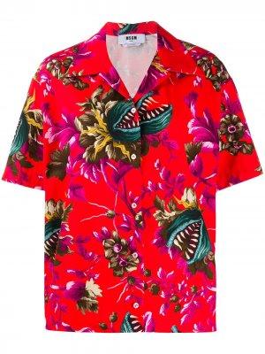 Рубашка Venus Fly Trap с принтом MSGM. Цвет: красный