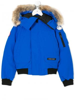 Пуховик с капюшоном отделкой из меха койота Canada Goose Kids. Цвет: синий