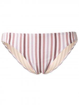 Полосатые плавки бикини Peony. Цвет: фиолетовый