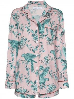 Пижама Bromley с принтом Desmond & Dempsey. Цвет: розовый