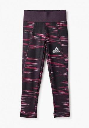 Тайтсы adidas. Цвет: бордовый