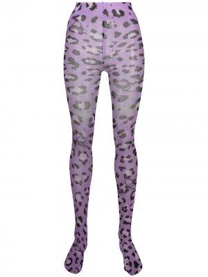 Колготки с леопардовым принтом Philipp Plein. Цвет: фиолетовый