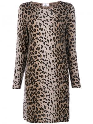 Платье с животным принтом Allude. Цвет: многоцветный